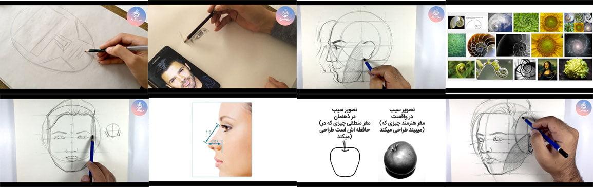 آموزش طراحی چهره - نسبت های چهره