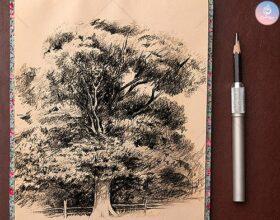 آموزش طراحی درخت با اسکیس و اصلا اسکیس در نقاشی چیست؟